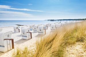 Reisen Sie an die Ostsee | Urlaub von Hofer Reisen