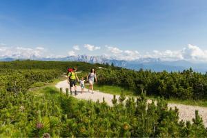 Südtirol HOFER REISEN