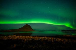 Island - Rundreise & Kreuzfahrt - Nordlichter & Walbeobachtung