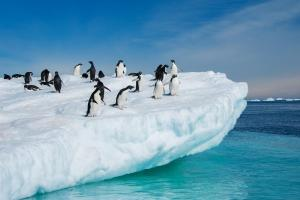 Antarktis & Chilenische Fjorde - Kreuzfahrt