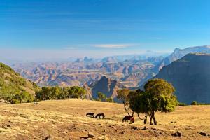 Äthiopien & Sansibar - Rundreise & Baden