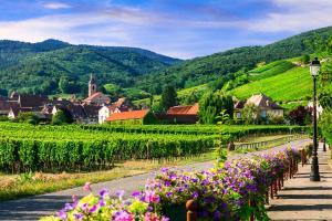 Baldersheim - Elsass