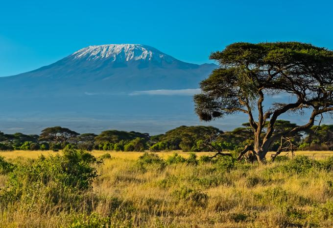 Kleiner Kühlschrank Hofer : Kenia baden safari hofer reisen