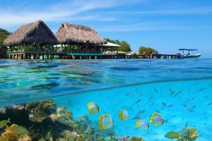 Karibik & Mittelamerika - Silvester-Kreuzfahrt