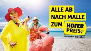 Alle ab nach Malle zum HOFER-Preis Mallorca Paar Strand HOFER REISEN
