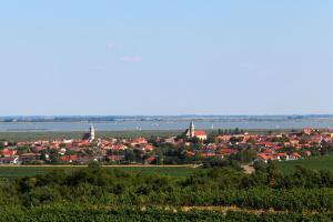 Rust am Neusiedler See - Gans Burgenland Genuss Festival