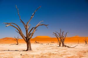 Namibia & Südafrika - Rundreise