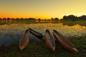 Botswana - Rundreise & Safari