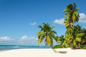 Südafrika & Mauritius - Safari & Baden