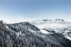 Kitzbüheler Alpen - Oberndorf bei Kitzbühel
