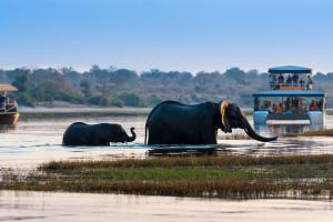 Namibia, Botswana & Simbabwe - Rundreise