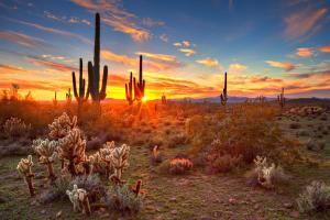 Arizona & die amerikanische Westküste - Rundreise