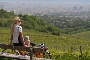 Von Wien nach Budapest - Radtour