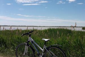 Radfahren am Neusiedlersee HOFER REISEN