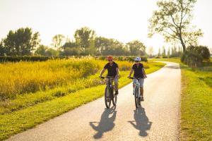 Sternfahrten E-Bike HOFER REISEN