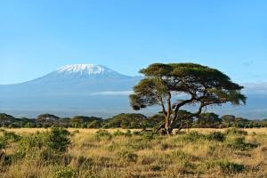 Kenia - Safari & Baden