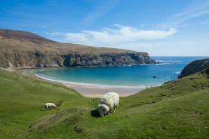 Irlands wilde Nordwestküste - Rundreise