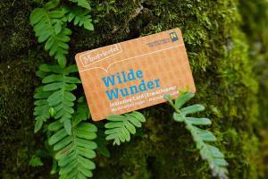 Wilde Wunder Card HOFER REISEN